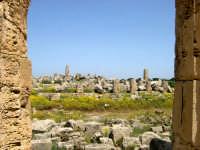 Situata su di una spianata alta circa 30 metri s.l.m., Selinunte prende il nome dal Selinon. Venne fondata da coloni di Megara Hyblaea guidati dall' ecista Pammilos, nel VII secolo a.C. Tempio E sullo sfondo il tempio F e G.  - Selinunte (2217 clic)