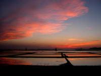 Il tramonto sulle saline  - Marsala (2439 clic)