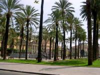 Piazza Castelnuovo PALERMO Giovanni Caruso