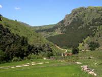 Monte Scuro  - Prizzi (10933 clic)