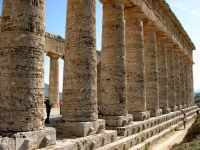 Il tempio, eretto nel 430 a.C., è un elegante edificio dorico.    - Segesta (2409 clic)