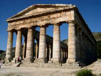 Il tempio, eretto nel 430 a.C., è un elegante edificio dorico.  - Segesta (2364 clic)