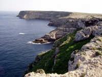 - Lampedusa (3259 clic)