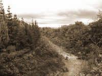 Il torrente Macchia in piena  - Macchia di giarre (5805 clic)