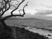 il mare di Torre Archirafi  - Riposto (4912 clic)