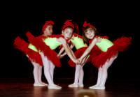 Saggio di danza. P6017778  - Patti (3664 clic)