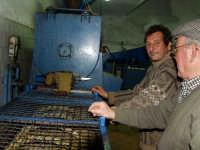 OLEIFICIO PALMERI. La pasta di olive passa nella terza sezione della gramola dove viene ancora lavorata cioè viene gramolata per favorire la separazione dell'olio quando verrà processata nel Decanter.  - Montagnareale (3417 clic)