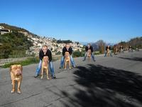 DSCN16541654x1b-Gaetano de Luca e il suo cane Perla.sullo sfondo il paese di Montagnareale- Sebastiano. (3111 clic)