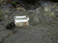 Batteria di macchina nel torrente montagnareale-100179 (3771 clic)