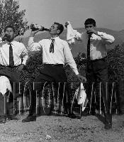 Archivio Vazzana-1963/2931-candido,Gino e Nino   - Montagnareale (4169 clic)