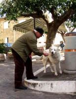 salvatore Bonfiglio e il mio cane.  - Montagnareale (2702 clic)