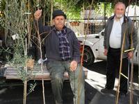 Il venditore di alberi-S.antonio 2011   - Montagnareale (4254 clic)
