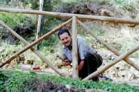 Sebastiano Pizzo sta realizzando una staccionata alla forestale.  - Montagnareale (3128 clic)