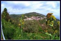 MONTAGNAREALE.  - Montagnareale (2095 clic)