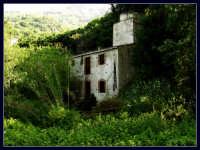 Il vecchio Mulino di Capo.  - Montagnareale (1823 clic)
