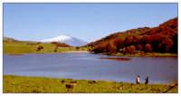 Parco dei Nebrodi:lago Biviere;sullo sfondo l'Etna.  - San fratello (9636 clic)