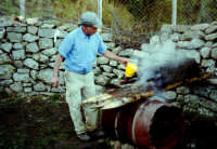 Macellazzione di un maiale selvatico nel parco dei nebrodi;si versa acqua bollente per eliminare il pelo.  - San fratello (13985 clic)