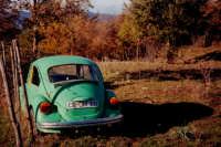 Un vecchio Maggiolino abbandonato nel parco dei Nebrodi.  - San fratello (9549 clic)