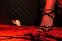 Il topolino Bianco.  - Montagnareale (3889 clic)