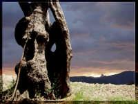 Montagnareale:Paesaggio.  - Montagnareale (3146 clic)