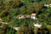 C/da Buccia.  - Montagnareale (2058 clic)