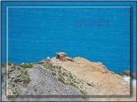 Capo Calavà-DSCN6077 (588 clic)