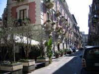 via pacini   - Catania (3521 clic)