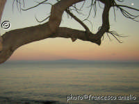 Il mare di Torre Archirafi, sullo sfondo la costa Calabra. (2005)   - Torre archirafi (4003 clic)