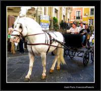 Sagra del pistacchio 2006, sfilata di carretti e cari siciliani.  - Bronte (2491 clic)