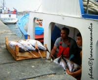 Ritorno dalla pesca. (2oo6)  - Riposto (2225 clic)