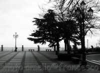 piazza  - Milo (3079 clic)