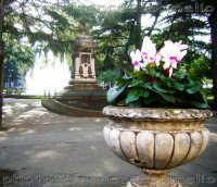 Giardini pubblici, Villa dedicata a Edoardo Pantano, nota ai Ripostesi cone Villa Pantano. (2oo6)   - Riposto (2739 clic)