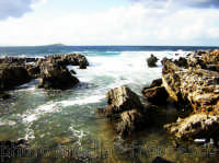 Lungomare di Sferracavallo, sullo sfondo Isola delle Femmine.(2oo5)  - Sferracavallo (3851 clic)