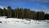 Neve. (2oo6)  - Linguaglossa (1823 clic)