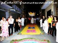 Processione del Corpus Domini, infiorata. 2oo6  - San pier niceto (2843 clic)