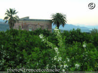 Palazzotto Signorile, immerso fra i profumi di zagara di un giardino di arancie, sullo sfondo il golfo di Taormina.(2oo5)  - Macchia di giarre (4192 clic)