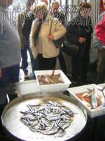 Mercato del pesce e vendita al dettaglio del pescato locale. Pescheria di Riposto (CT). 2oo5  - Riposto (9367 clic)