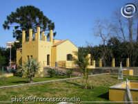 Museo Botanico Didattico  Parco delle Kentie . (2005)  - Riposto (2589 clic)