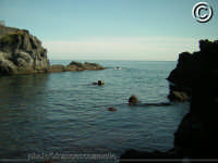 Il mare di Pozzillo. (2oo5)   - Pozzillo (3661 clic)