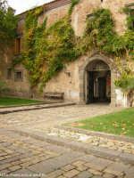 Castello di Nelson.(2004)  - Maniace (3098 clic)
