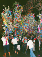 Festa della Madonna del Rosario (09.07.2005) - Gruppi in festa.  - Fleri (5324 clic)