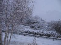 Zafferana Centro - L'abbondante nevicata della notte tra il 6 e il 7 febbraio 2006.  - Zafferana etnea (3788 clic)