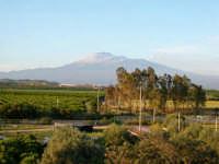 Sferro, l'Etna  - Sferro (5413 clic)