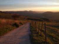 in discesa verso il tramonto. Campagne ennesi - zona Contrada Manchi.  - Enna (5051 clic)