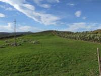 Windows. Tipico paesaggio agreste del bellissimo entroterra sicano.  - Valguarnera caropepe (4687 clic)