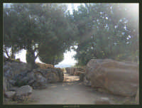 Soggetto: Rovine della Valle dei Templi Fotocamera: Nikon Coolpix 2100 Software: Adobe Photoshop CS2 Luogo: Agrigento Data: 21 Agosto 2oo5 Ore: 17:23  - Agrigento (2890 clic)
