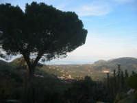 dalla mia finestra 2  - Montagnareale (2270 clic)