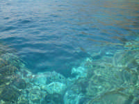 Fondale (Pantelleria)  - Pantelleria (4746 clic)