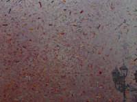lancio di carte colorate inneggianti al santo all'uscita del fercolo.  - Santa venerina (3134 clic)