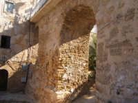 Castellammare  - Castellammare del golfo (519 clic)